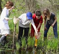 Pengajaran Lingkungan