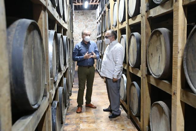 Casa D'Aristi proyecta producir un licor de naranja agria el próximo año
