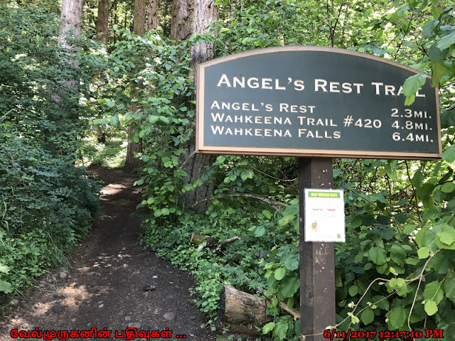 Angels Rest TrailHead