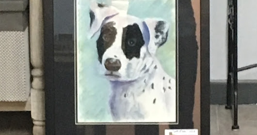 Spotted Black and White Dog Art, pastel pet portrait by Texas artist