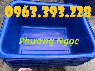 Thùng nhựa chữ nhật nuôi cá, thùng nhựa công nghiệp, thùng dung tích lớn 9a8c3770778890d6c999