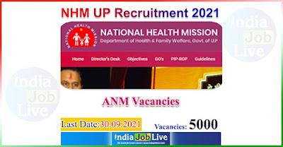jobs-national-health-mission-nhm-uttar-pradesh-up-recruitment-indiajoblive.com