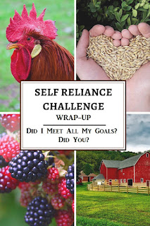 What are your self-reliance goals for this month? Did you reach them? Here are some ideas of goals to work towards.