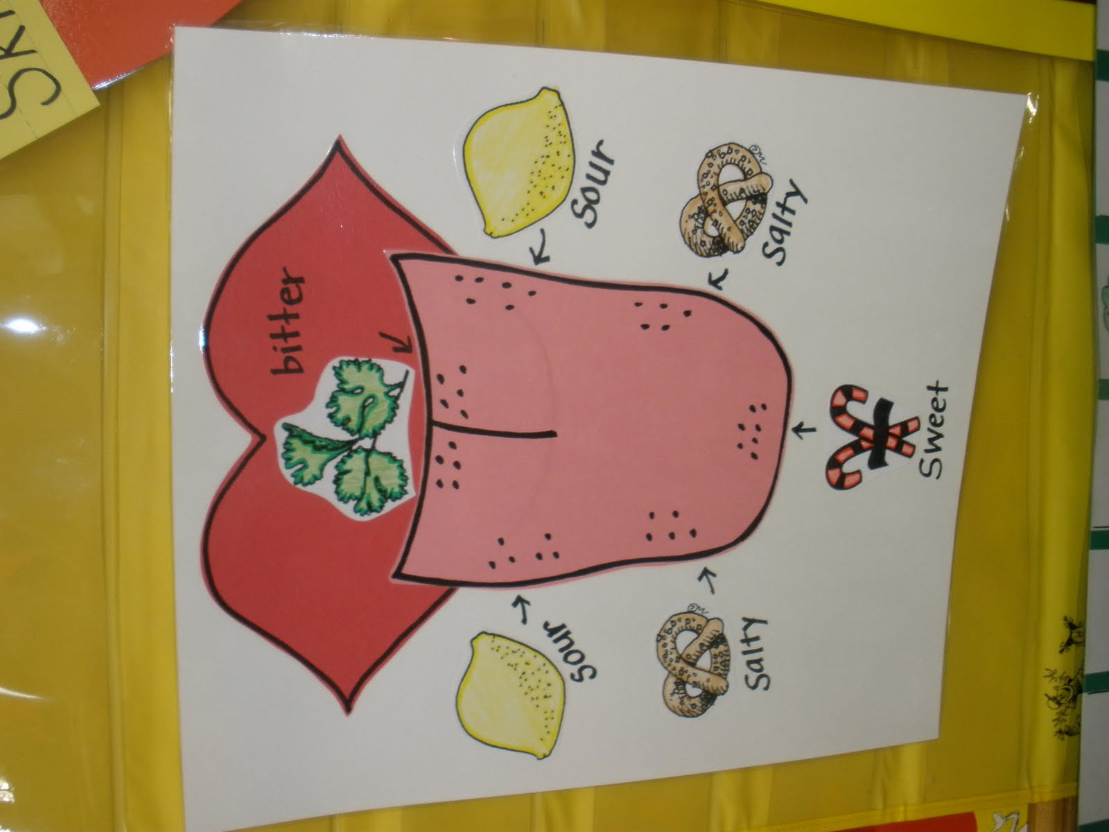 The Art Of Teaching A Kindergarten Blog 5 Senses Taste