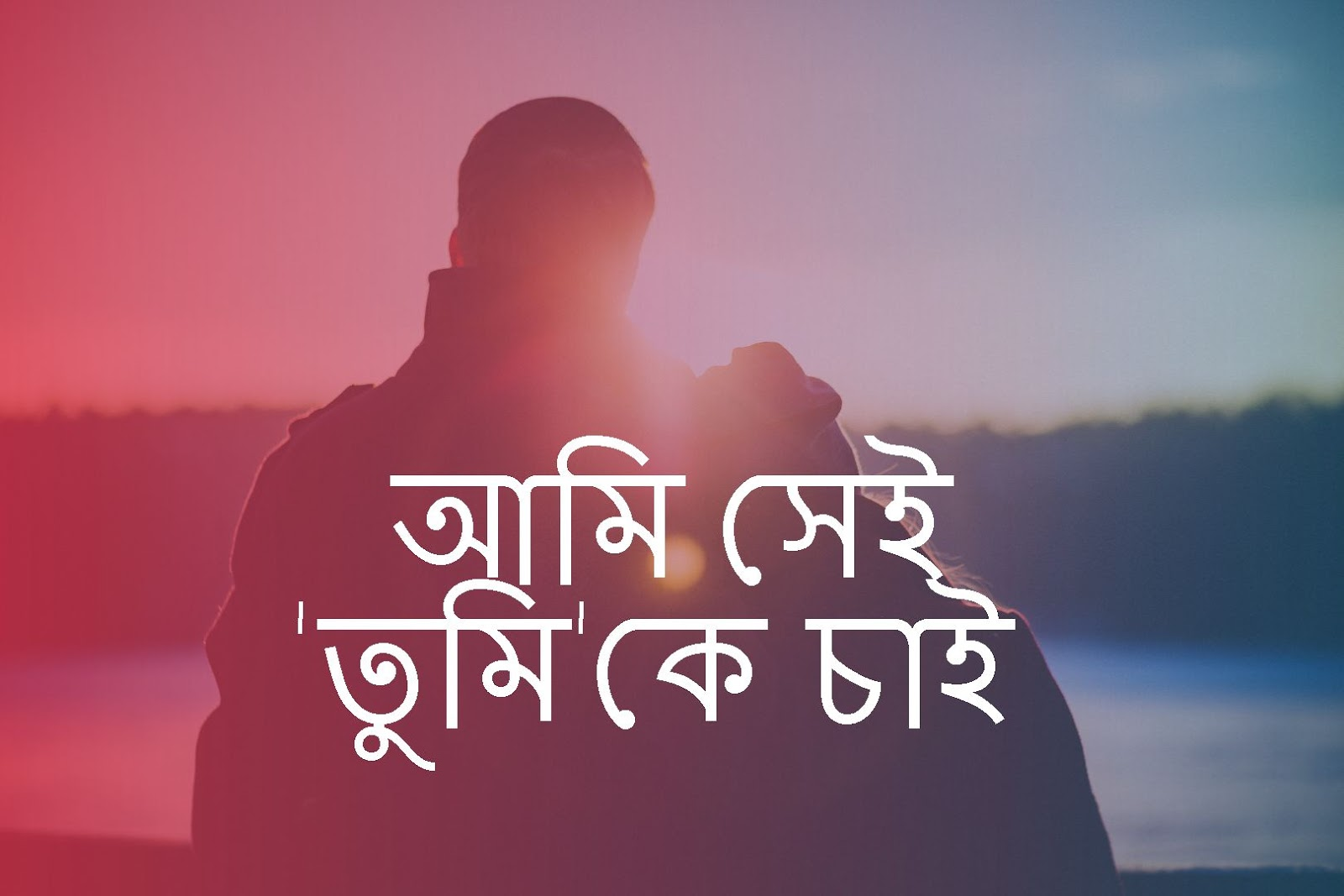 আমি সেই 'তুমি'কে চাই -Bengali Poetry On Love