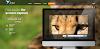 Joxi: Как Сделать Скриншот на Компьютере Windows 7, 8, 10. Print Screen экрана монитора (Switzerland)