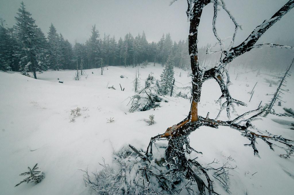 Resor Ski
