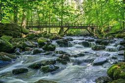 Jenis Sungai Berdasarkan Sumber Airnya