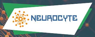 neurocyte обзор
