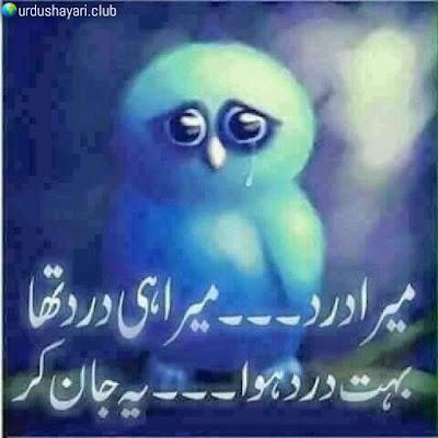 Mera Dard-- Mera He Dard Tha..  Buhat Dard Howa--Yeh Jaan Ker..!!  #poetry #sadshayari