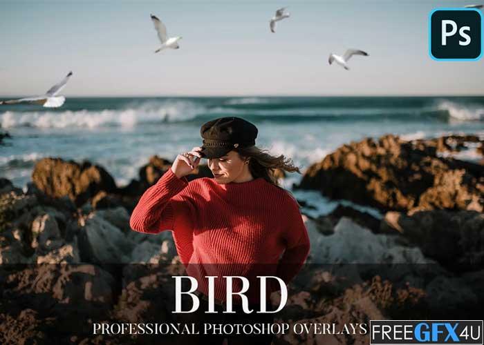 Bird Overlays Photoshop