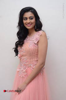 Actress Neha Hinge Stills in Pink Long Dress at Srivalli Teaser Launch  0034.JPG