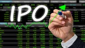 IRCTC IPO Know What To Invest Plus Minus