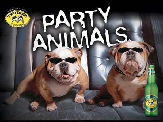 Party Animals Funny Pictures Calgary Edmonton