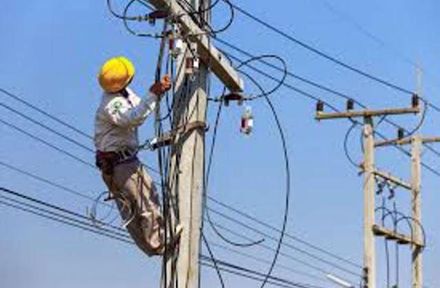 लाइन में पेड़ गिरने से 142 गांवों की बिजली गुल