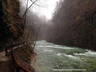 Eslovenia - Bled - Garganta Vintgar