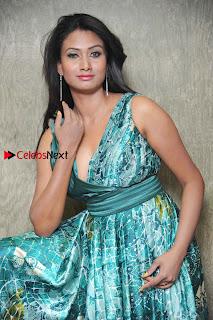Actress Vinaya Pos at Haalu Thuppa Movie Press meet  0002.jpg