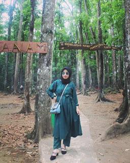 Hutan Lindung, Taman Wisata Sesaot