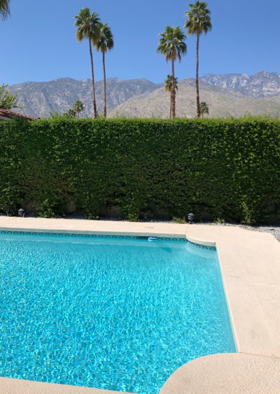 Palm Springs pool mountain view
