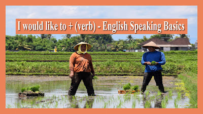 I would like to + (verb) - English Speaking Basics