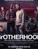 Urmariti acum filmul Brotherhood 2016 Online Gratis Subtitrat