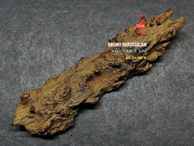 Beautiful shape of high quality of very old age soil grade agarwood pendants from Brunei,