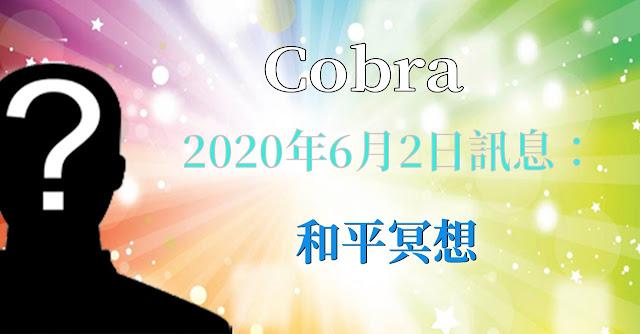 [揭密者][柯博拉Cobra] 2020年6月2日:和平冥想