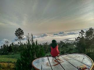 Bukit Melogi Cinta di Desa Clekatakan Kabupaten Pemalang
