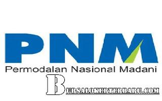 Lowongan Kerja Terbaru di PT. Permodalan Nasional Madani (Persero) - Account Officer/Finance Administration Officer