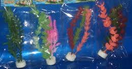 Cara Membuat Aquarium Mini Dari Plastik Bisnis Menguntungkan