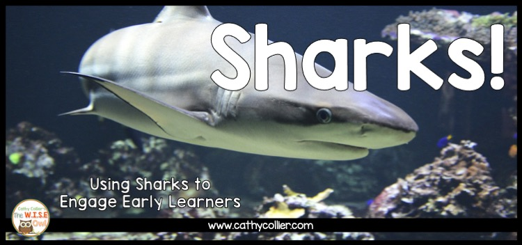 Want a great way to engage students in learning...add a shark! Sharks are funny, sneaky, and even scary, but kids love them (at least on paper).