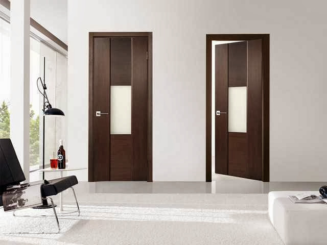 Interior door modern design