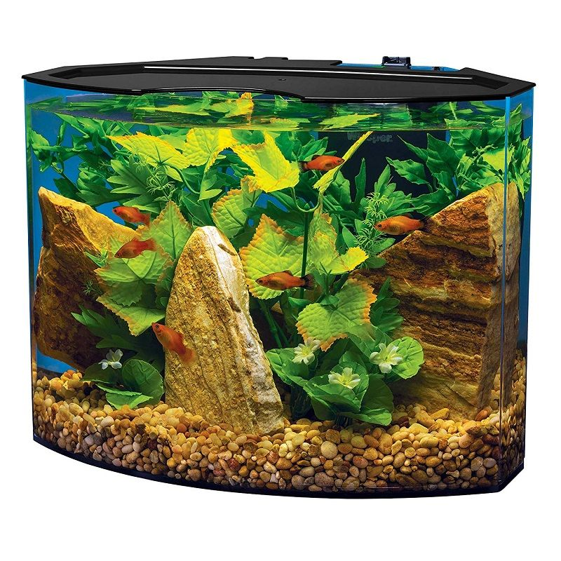 Betta Fish Tank Size - Tetra Crescent Aquarium