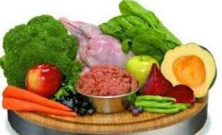 Nutrisi untuk Diet Vegetarian
