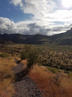 at Big Bend National Park
