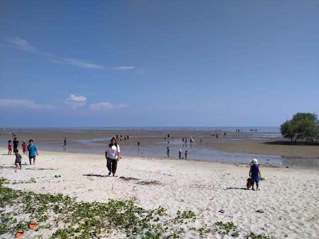 ramai orang di pantai morib air surut