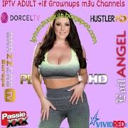 IPTV m3u Updated ADULT Channels Lists 19/09/2021