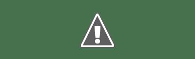 राजनीतिक दल का अर्थ और परिभाषा एवं विशेषताएं