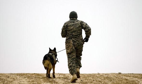 Seekor Anjing Selamatkan Pasukan SAS dari Kepugan ISIS