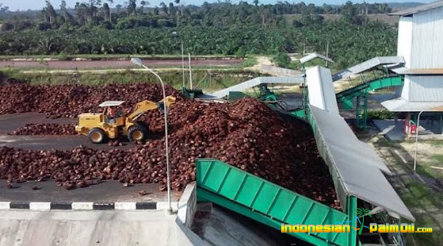 Bupati Bangka Aprsiasi Pembangunan Pabrik CPO Sawit Di Bakam