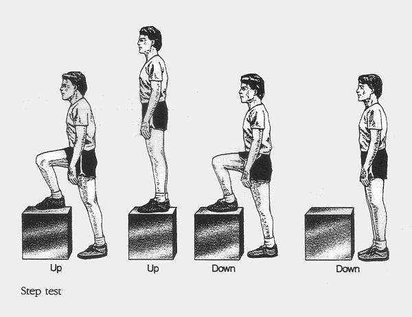 Ang Philippine Physical Activity Pyramid Guide para sa