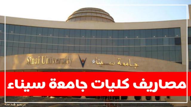 جامعة سيناء الخاصة المصرية ( الكليات  وشروط القبول والتسجيل ومصروفات الكليات والأوراق المطلوبة للالتحاق بجامعة سيناء )