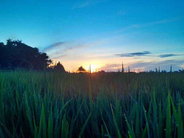 Matahari Sudah Terbit, Jangan Tidur Melulu!