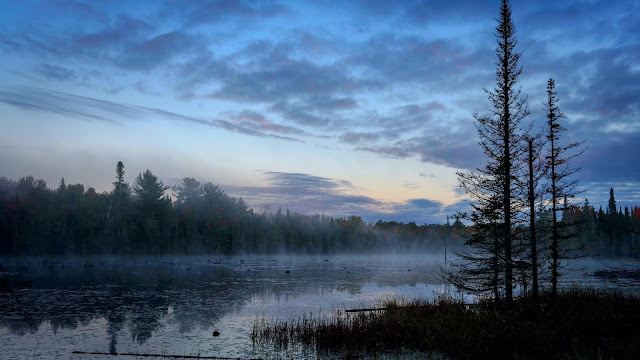 Early morning wallpapers, lake, forest, landscape
