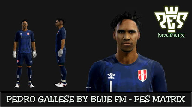 PES 2013 Pedro Gallese Face