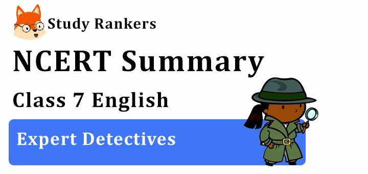 Chapter 6 Expert Detectives Class 7 English Summary