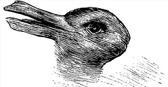 Coelho ou Pato? A imagem viralizou na internet, mas o que ela significa?