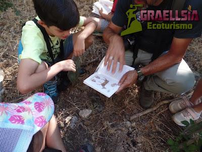 Campamento de verano en la Naturaleza