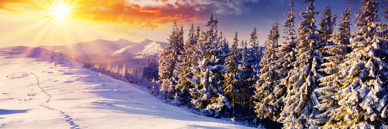 free winter screensavers download