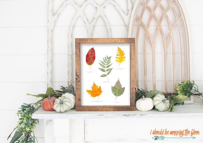 Free Fall Leaf Printables